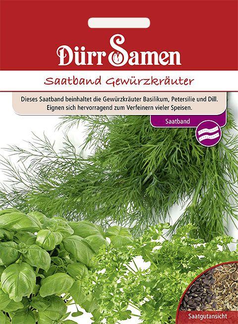 Dürr Samen Saatband Gewürzkräuter (Basilikum, Dill, Petersilie)
