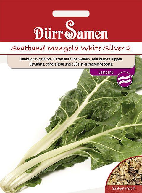 Dürr Samen Saatband Mangold White Silver 2