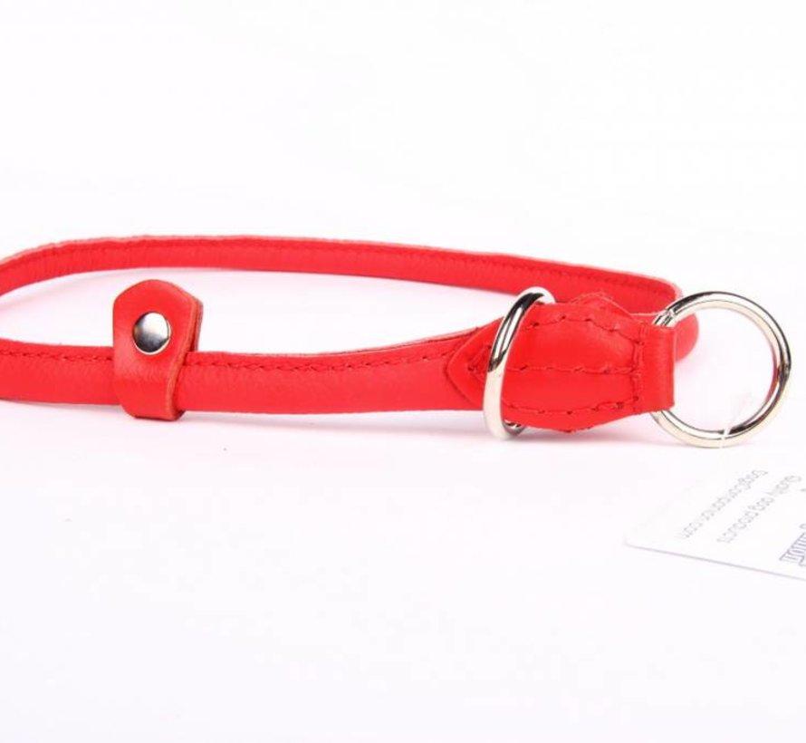 Leren sliphalsband hond (chroom)