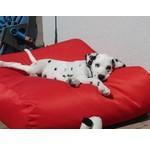 Rode hondenkussens