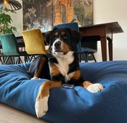 Dog's Companion® Hondenbed Strong Vancouver blue