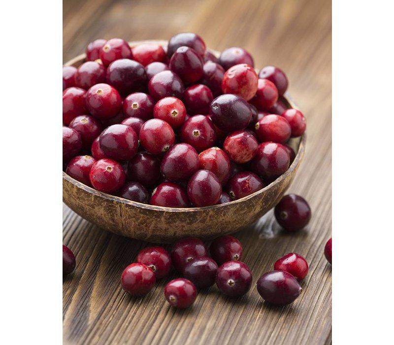Allesreiniger- Spray Patschuli & Cranberry (500 ml)