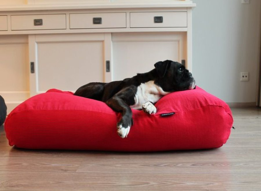 Hundebett Rot (Cord) Medium