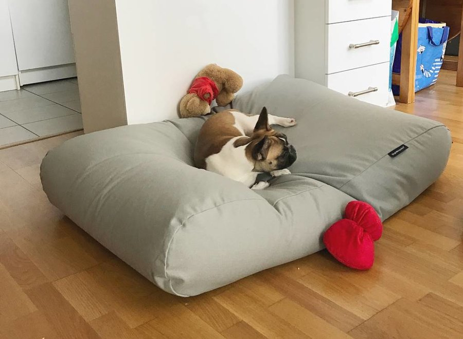 Hundebett Hellgrau Medium