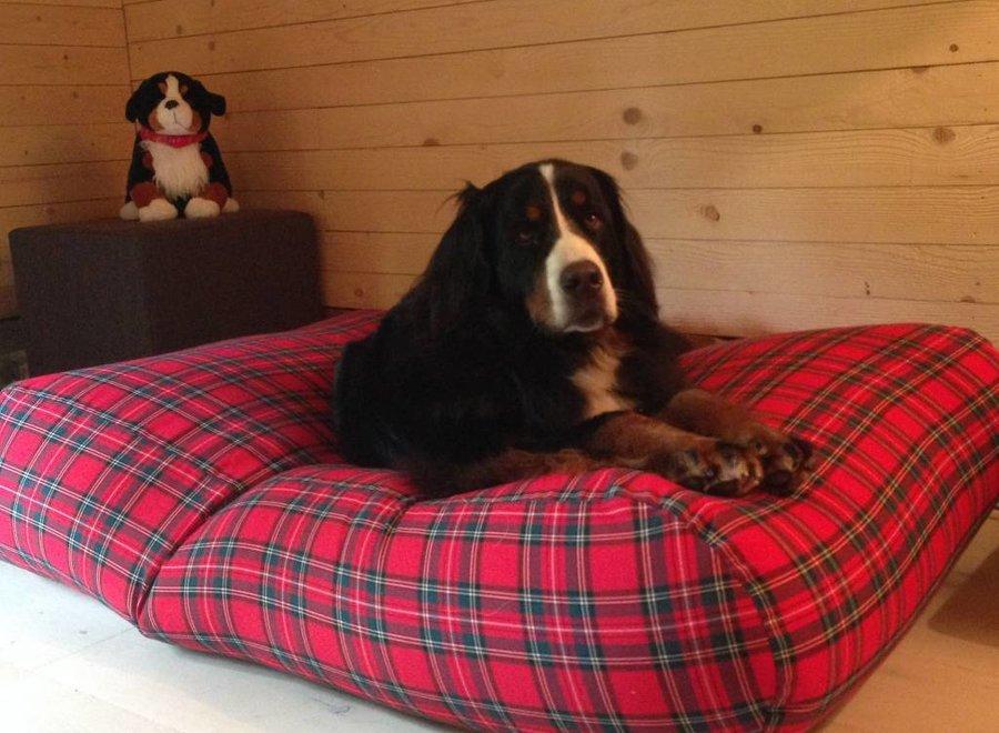 Hundebett Royal Stewart Superlarge