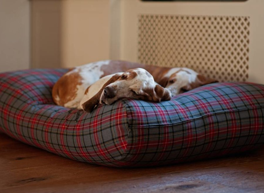 Hundebett Scottish Grau