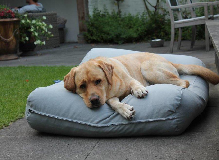Hundebett Hellgrau Large