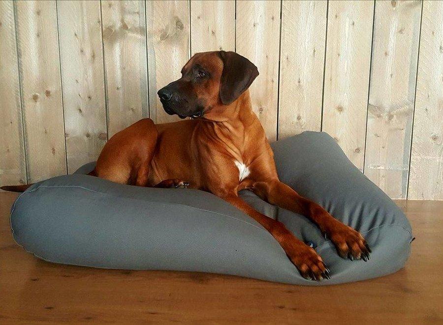 Hundebett Mausgrau Large