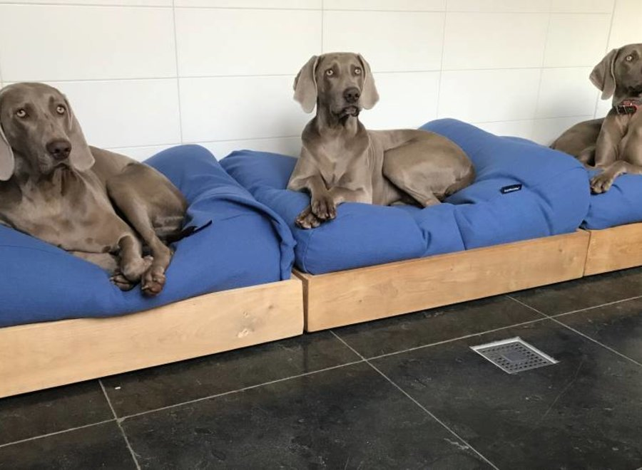 Hundebett Manhattan Blau Leinen