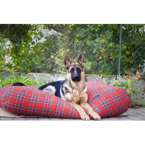 Dog's Companion® Hundebett Royal Stewart Small