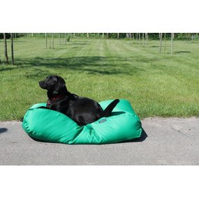 Dog's Companion® Hundebett Frühlingsgrün (Beschichtet) Medium