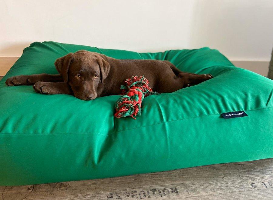 Hundebett Frühlingsgrün (Beschichtet) Superlarge