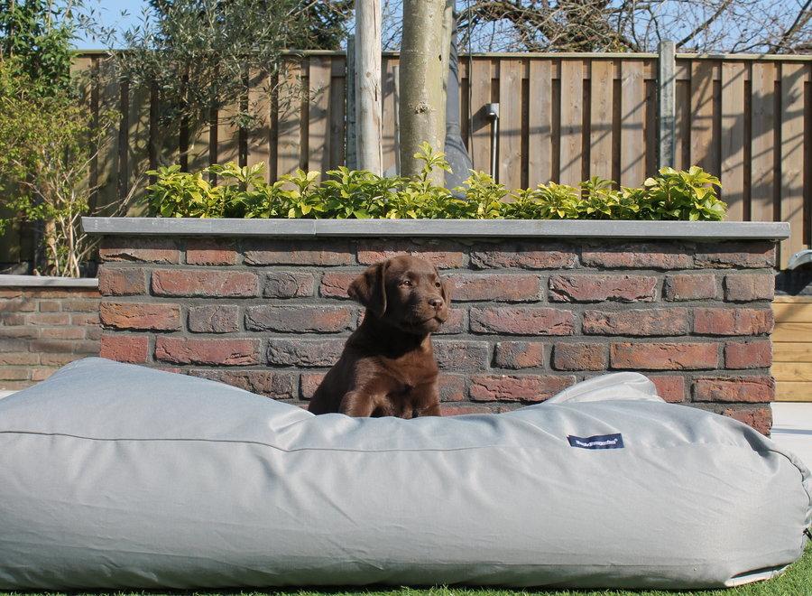 Hundebett Hellgrau (beschichtet)