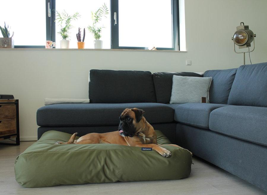 Hundebett Olivgrün (beschichtet) Medium