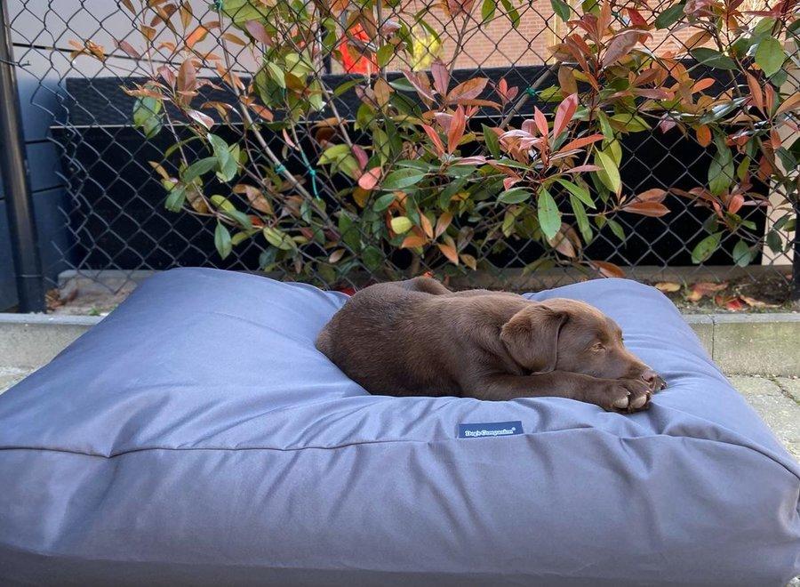 Hundebett Charcoal (Beschichtet) Superlarge