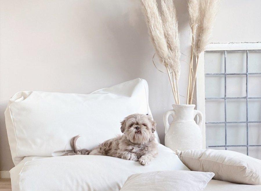 Hundebett Ivory Leather Look Superlarge