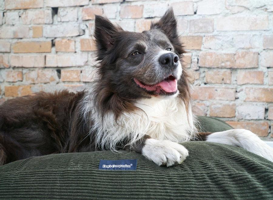 Hundebett Hunting (Cord)