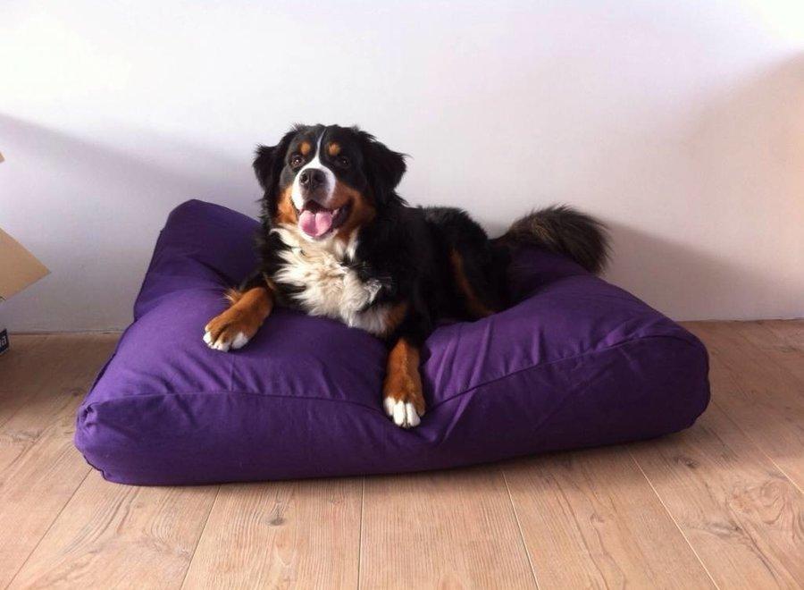 Hundebett Violett