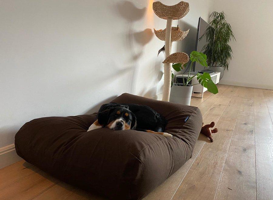 Hundebett Schokolade Braun Small