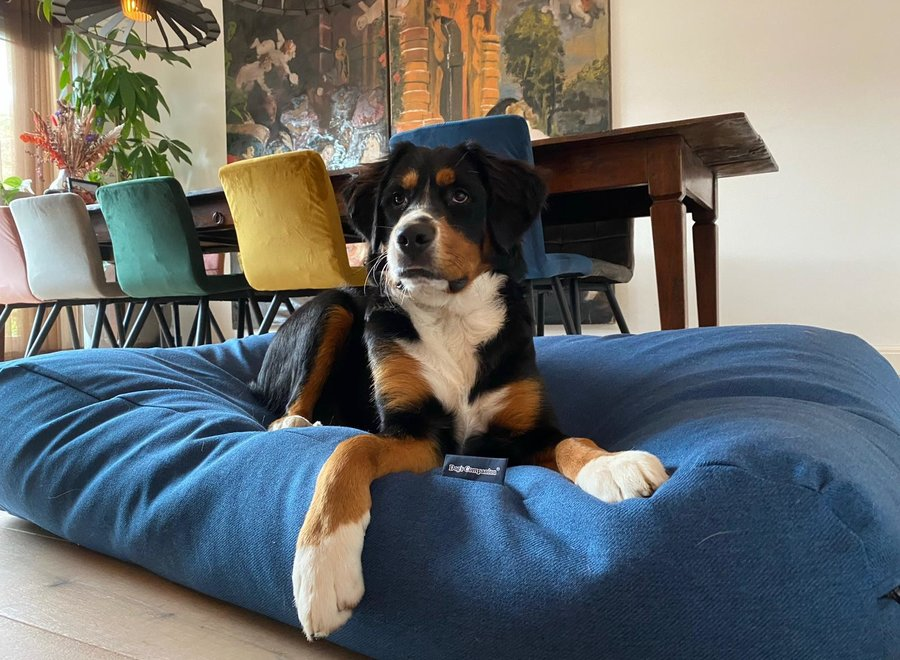 Hundebett Strong Vancouver blau