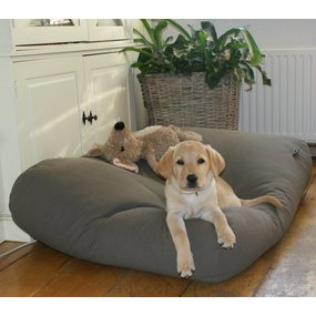 Dog's Companion® Hundebett Mausgrau Medium