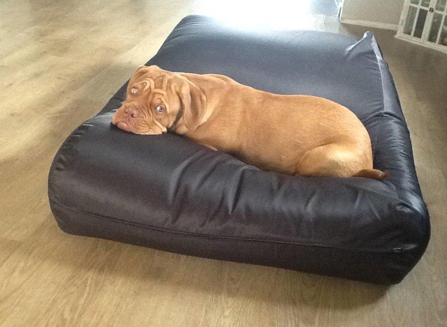 Hundebett Schwarz (Beschichtet) Superlarge