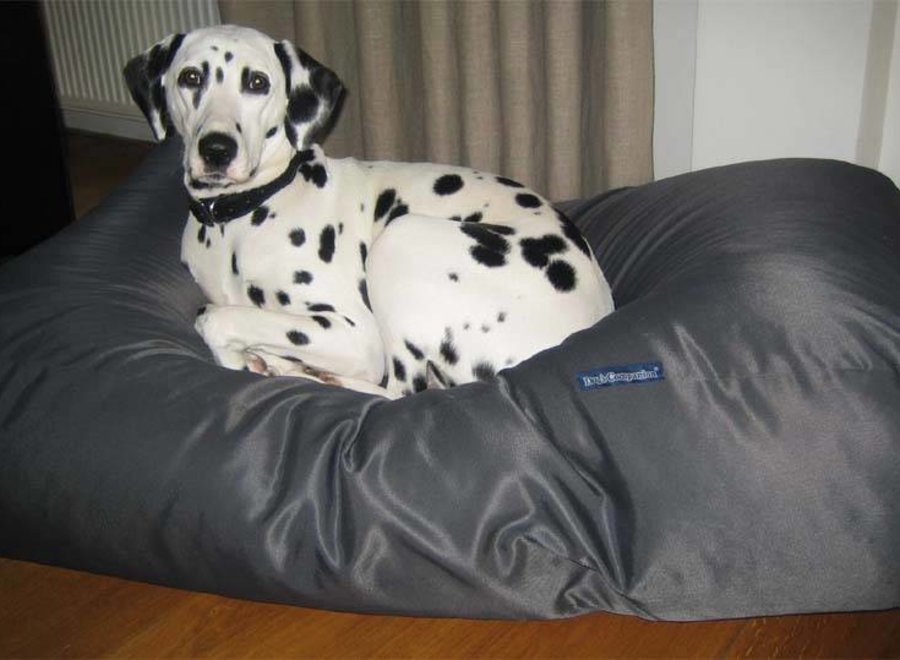 Hundebett Charcoal (Beschichtet) Small