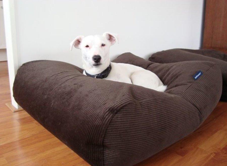 Hundebett Schokolade Braun (Cord) Superlarge