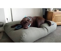 Dog's Companion® Dog bed Basalt