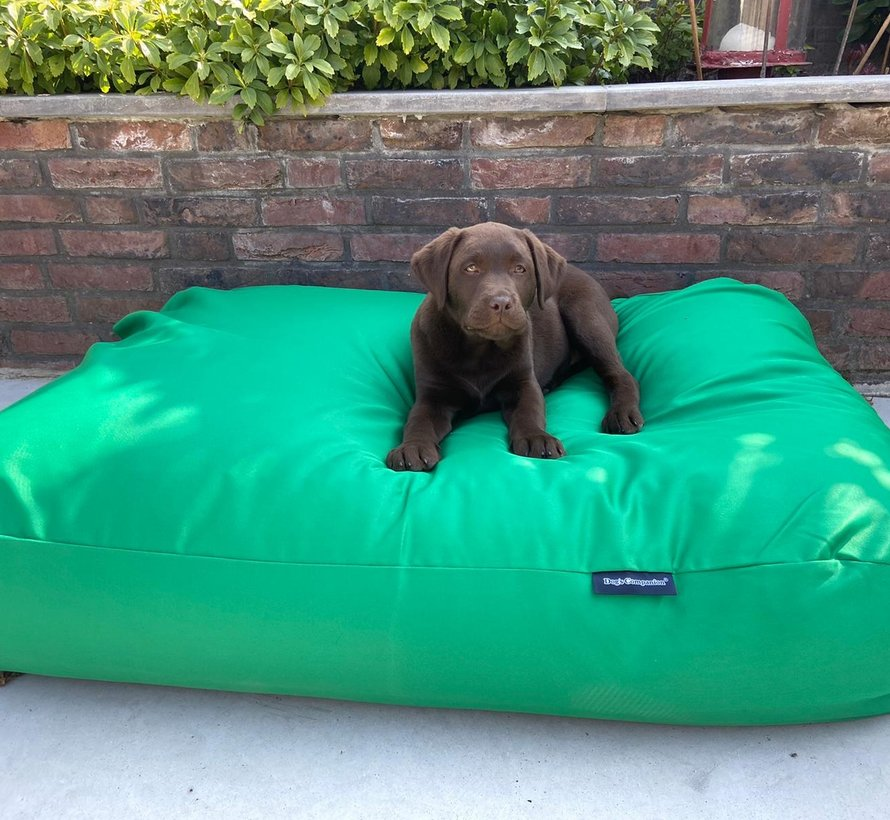 Hundebett frühlingsgrün (beschichtet)