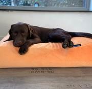 Dog's Companion® Hundebett Peach Samt