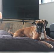 Dog's Companion® Hundebett Espresso Giant Corduroy