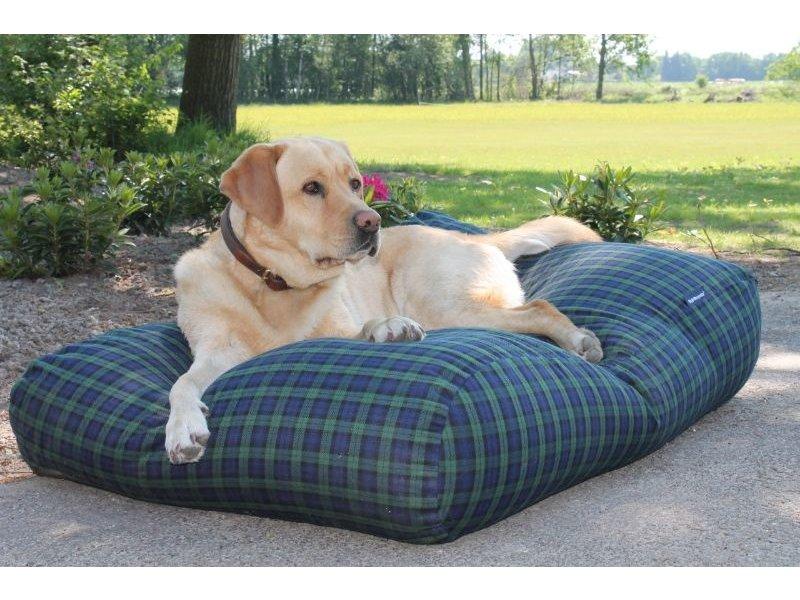 Dog's Companion® Bezug Black Watch