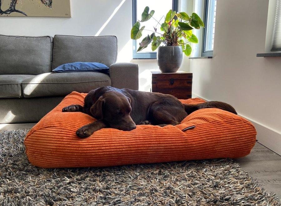 Hundebett Orange giant corduroy