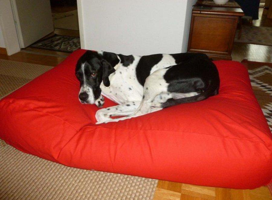 Hundebett Rot