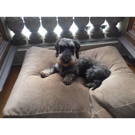 Dog's Companion® Lit pour chien Chameau (corduroy)