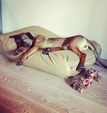 Dog's Companion® Lit pour chien khaki (coating)