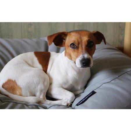 Dog's Companion® Lit pour chien Gris Clair Small