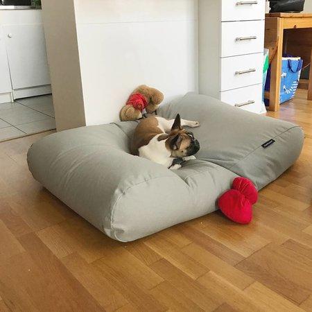 Dog's Companion® Lit pour chien Gris Clair Superlarge