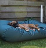 Dog's Companion® Lit pour chien Vert (coating) Small