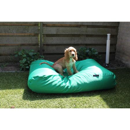 Dog's Companion® Lit pour chien vert printemps (coating) Superlarge