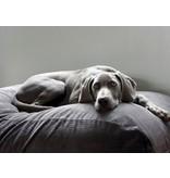 Dog's Companion® Housse supplémentaire Gris souris (corduroy)