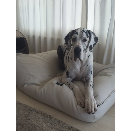 Dog's Companion® Housse supplémentaire Ivory leather look