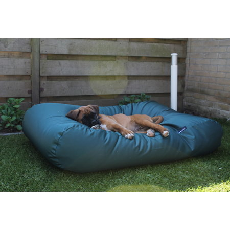 Dog's Companion® Housse supplémentaire Vert (coating) Small