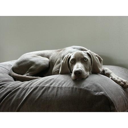 Dog's Companion® Housse supplémentaire Gris souris (corduroy) Large