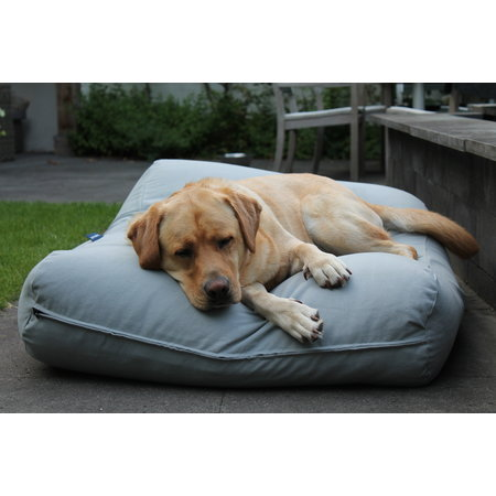 Dog's Companion® Housse supplémentaire Gris Clair
