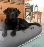 Dog's Companion® Lit pour chien Gris Souris Superlarge