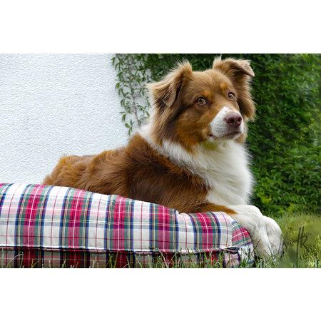 Dog's Companion® Lit pour chien Dress Stewart Small