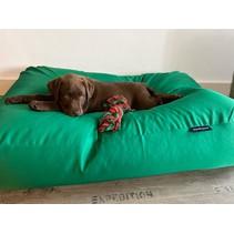 Lit pour chien vert printemps (coating) Small