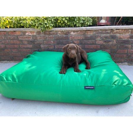 Dog's Companion® Lit pour chien vert printemps (coating) Medium